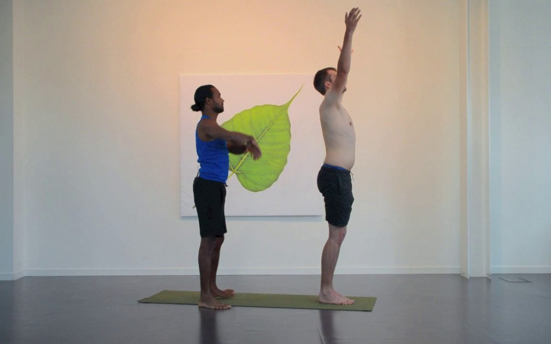 Begin with Sun Salutation A + B
