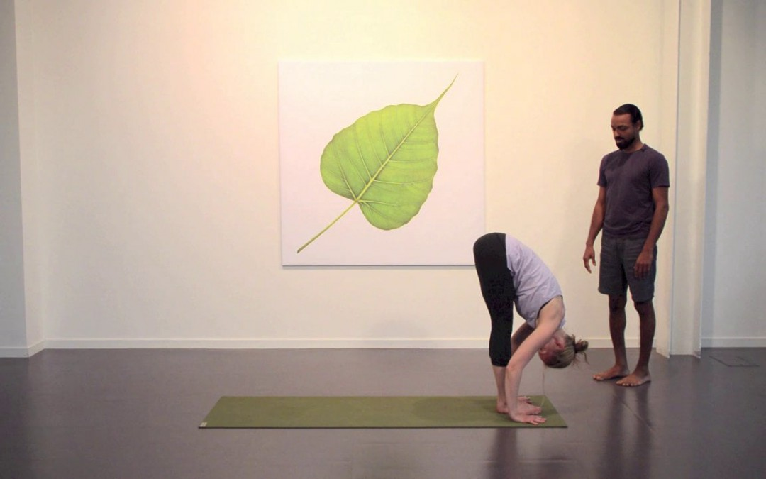 Surya B Breakdown of Hatha Yoga