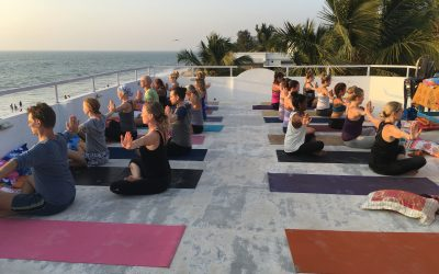 YogaRetreat in India January 4-12, 2020